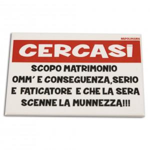 """Magnete """"CERCASI SCOPO..."""